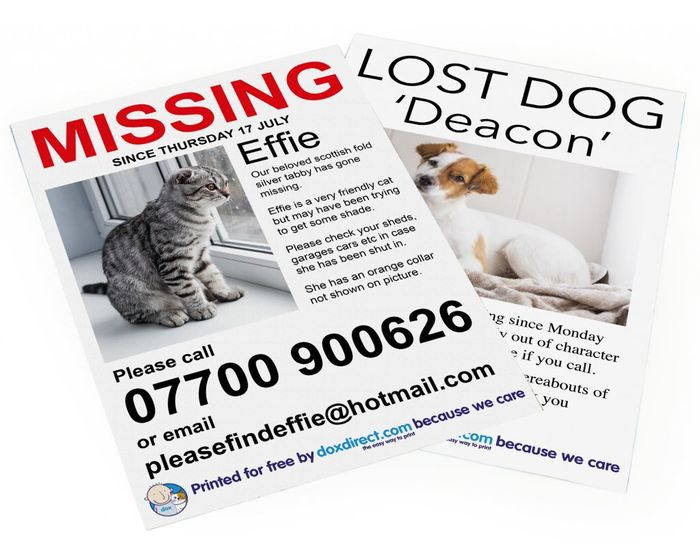 Free Missing Pet Posters