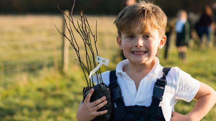 Free Trees for Schools and Communities