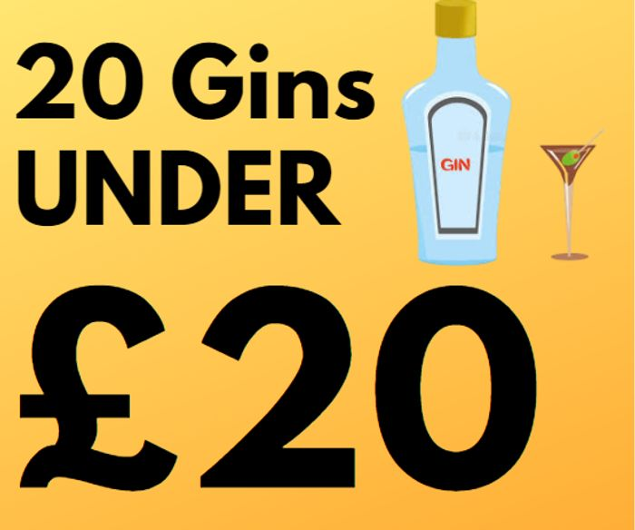 20 Top Gins £20 Or Less With Amazon Prime