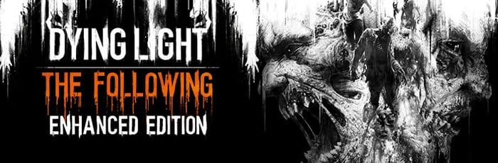 DYING LIGHT ENHANCED EDITION (PC Game Bundle)
