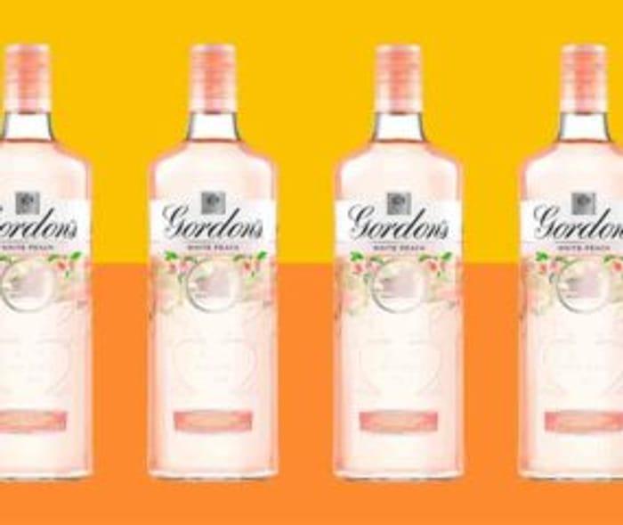 £13 Gordons White Peach/Lemon/Pink Gins