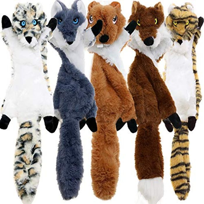 Pack of 5 Squeaky Dog Toys