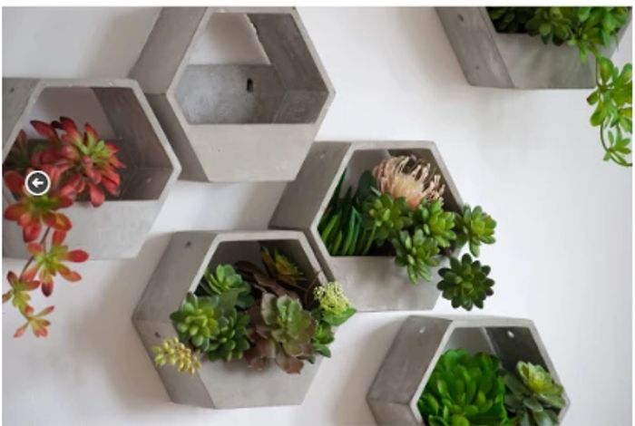 One Hex Wall Planter