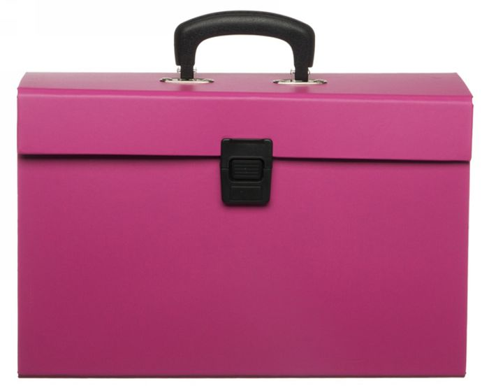 WHSmith Blue or Pink Expanding Home File