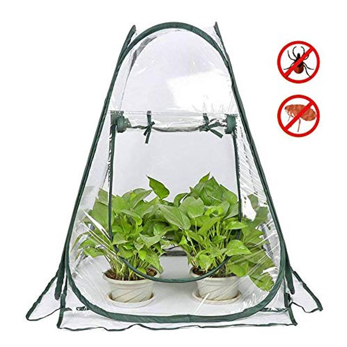 Mini Pop up Greenhouse Grow House Tent 70*70*80cm FREE DELIVERY
