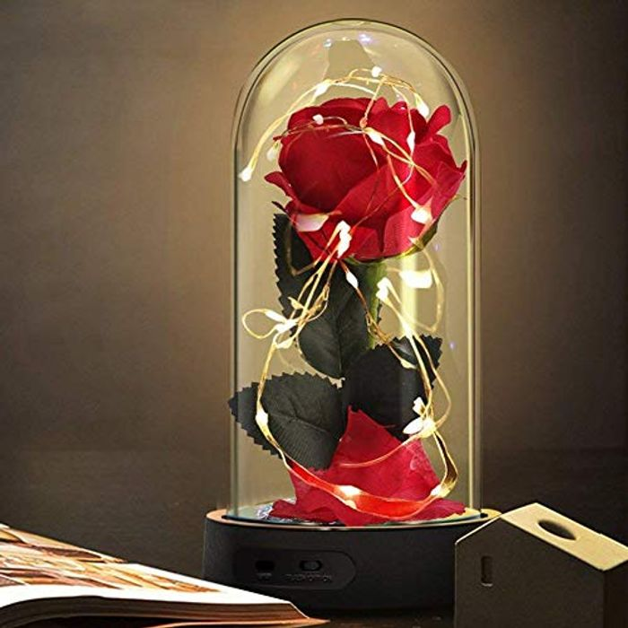 Beauty and the Beast.. Silk Rose with 7 Colors LED Light in Dome.  £5 Voucher.