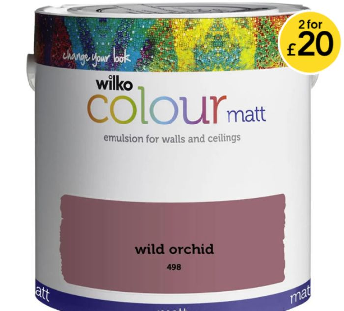 Wilko | 2 for £20 on Paint
