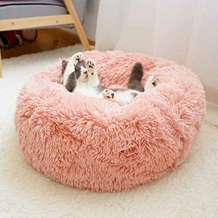 Pet Bed for Cats and Dogs