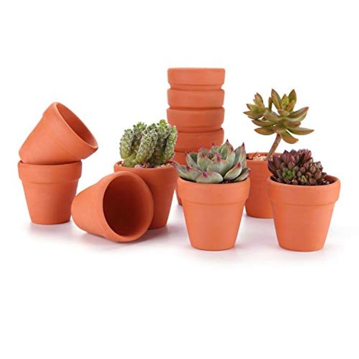 8cm Terracotta Clay Pots 12 Pack