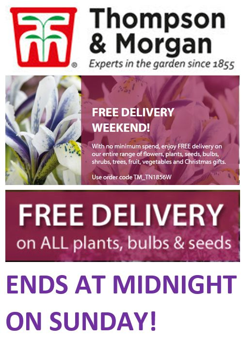 FREE DELIVERY WEEKEND! on ALL PLANTS, BULBS & SEEDS! NO MINIMUM SPEND