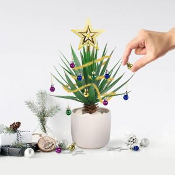 Festive Plant Baubles