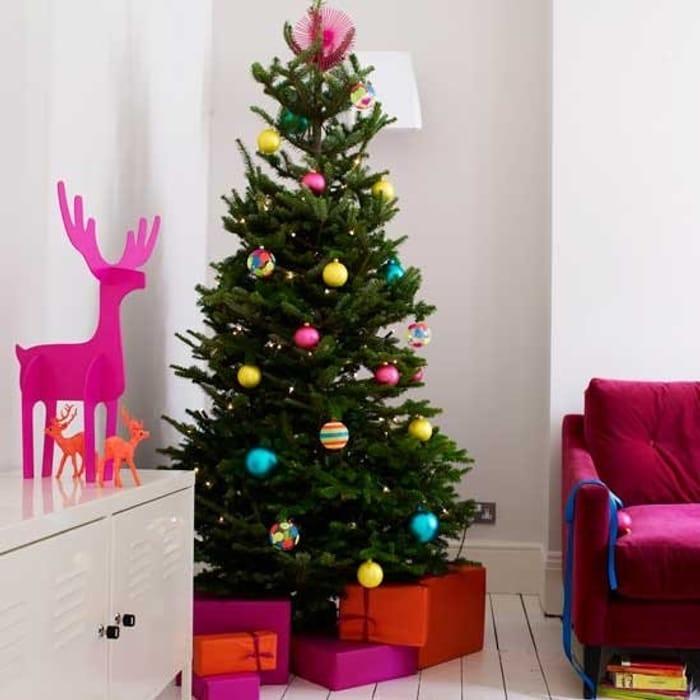 PRE-ORDER: Nordmann Fir Christmas Tree - Fresh Cut Non-Drop Luxury Tree