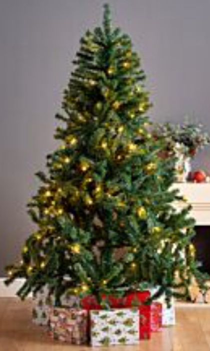 Christmas Trees from £9.99 - Free Click & Collect