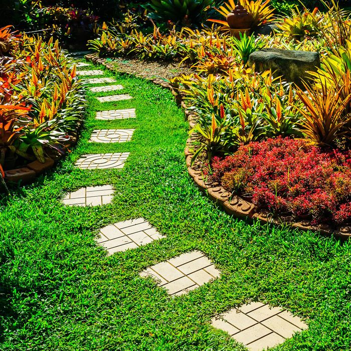 Garden Design and Maintenance Diploma Online Gift Experience Course for One