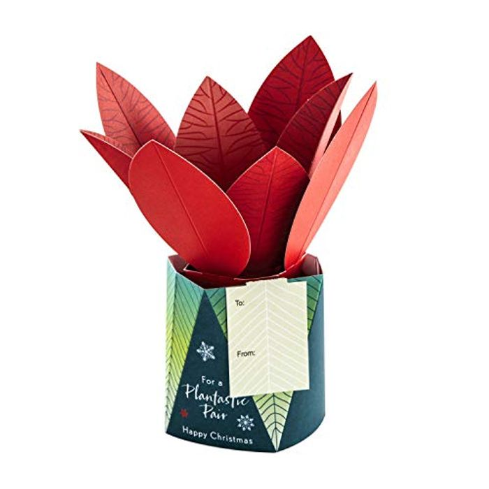 Christmas Card for Both from Hallmark - 3D Pop up Plant