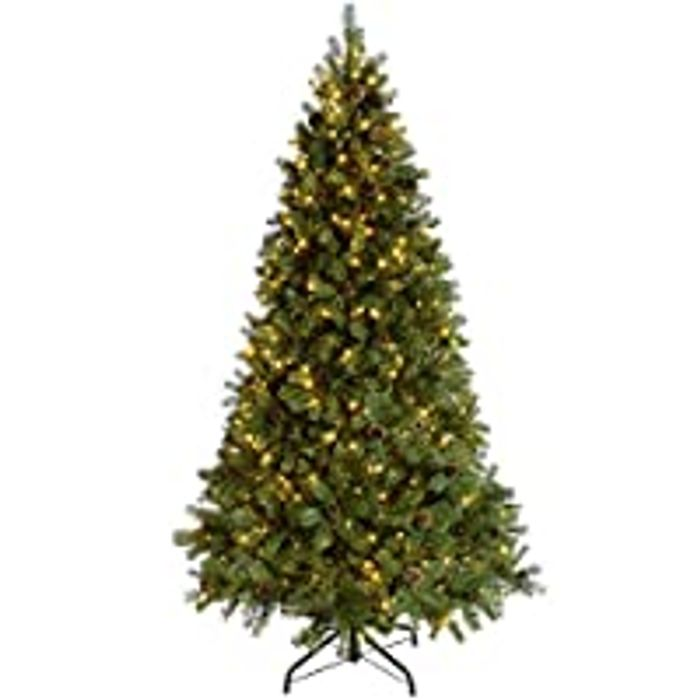 Up to 38% off Christmas Advents and Trees