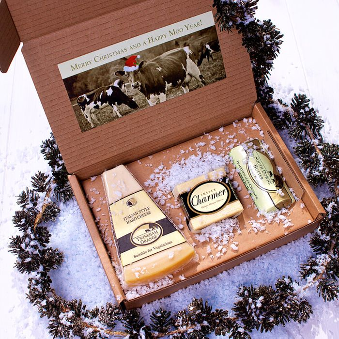 Win a Cheese Gift Box from Bookham Harrison