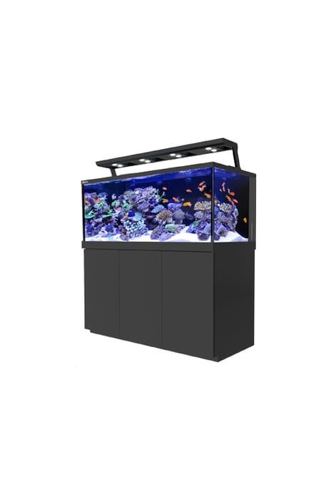 £10 off All Aquariums