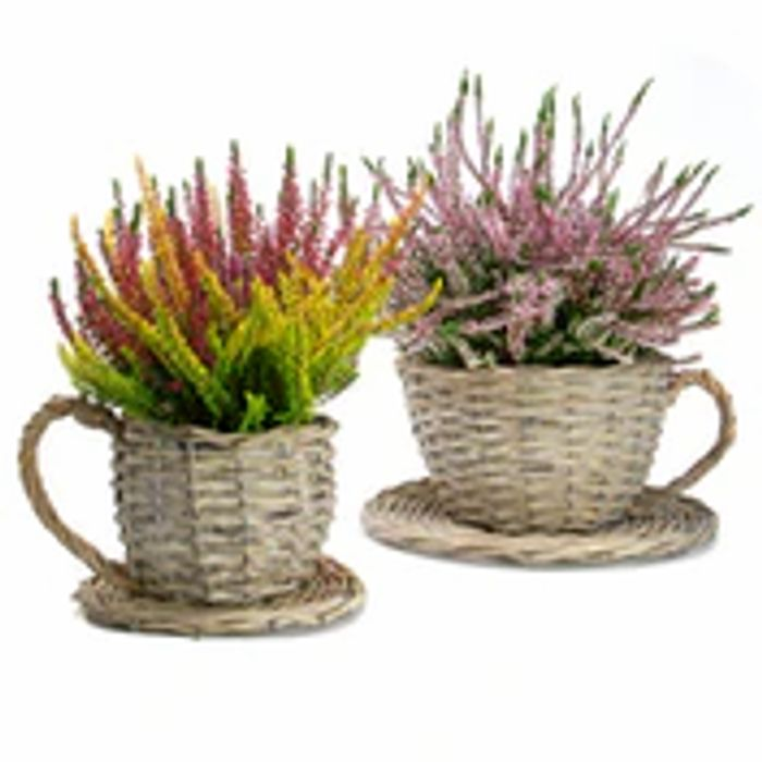 Set of 2 Willow Teacup Planters
