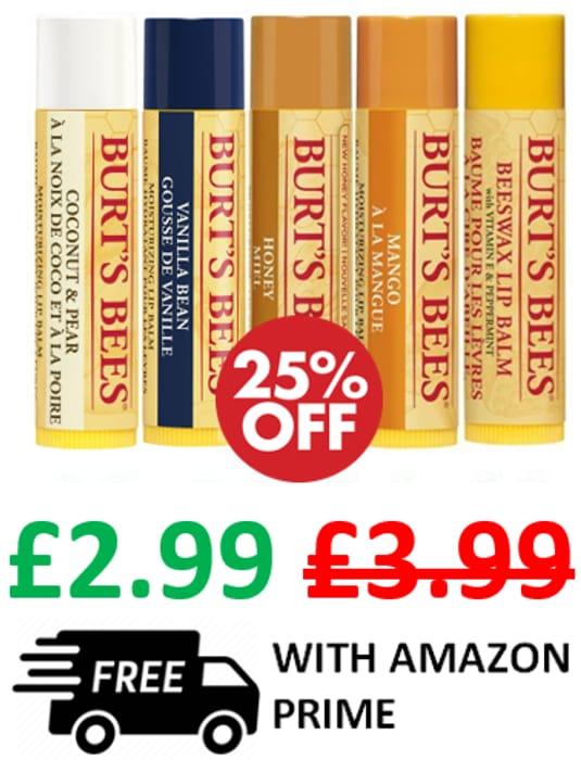 Burt's Bees 100% Natural Moisturising Lip Balm (1 tube)