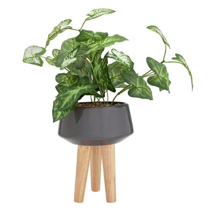 CHEAP! Argos Home Apartment Living Ceramic Artificial Planter