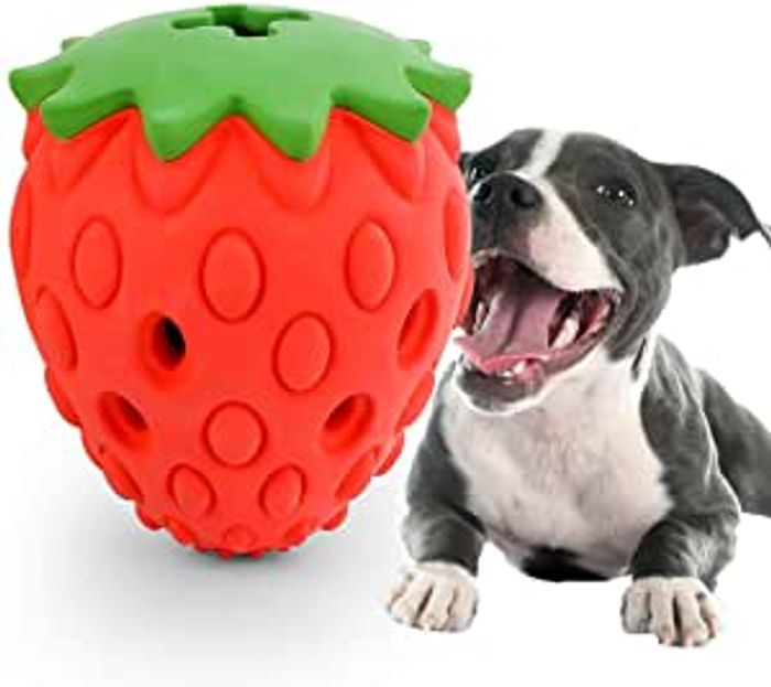 Not Indestructible Toys for Tough Dogs
