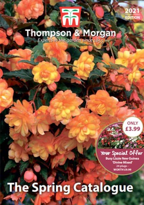 Choose 1 of 3 Thompson & Morgan Catalogues