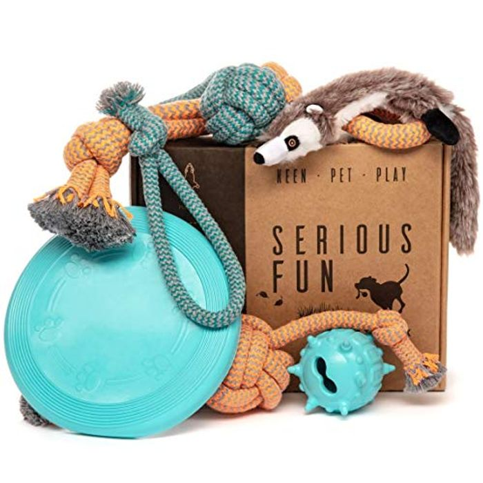 Keen.Pet.Play Dog Toys Set - Gift Pack of 6 - Interactive Boredom Relief Toy