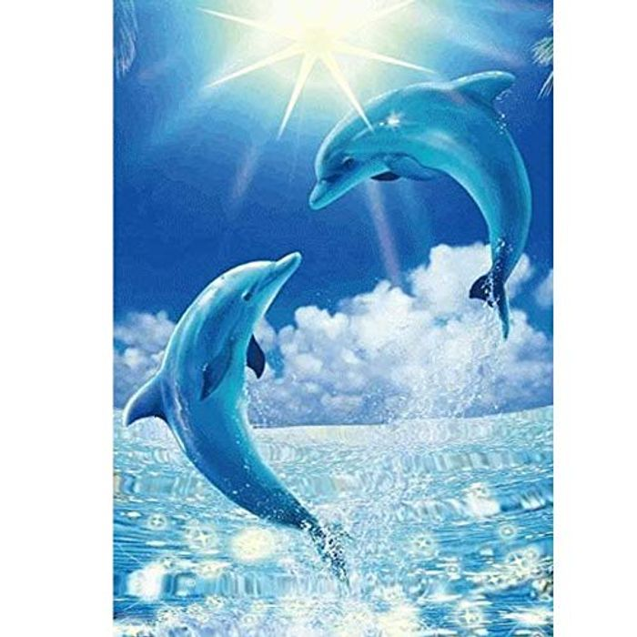 5D Dolphin Diamond Painting Kit