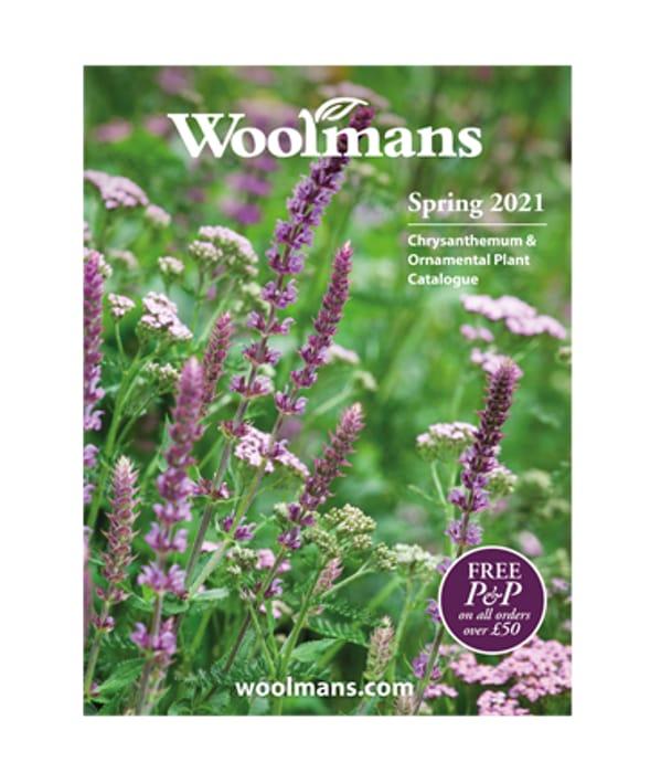 Free Woolmans Plant Catalogue