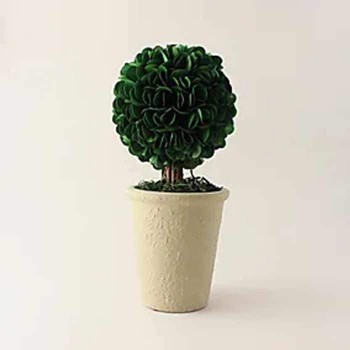Palm Lily Topiary 30cm