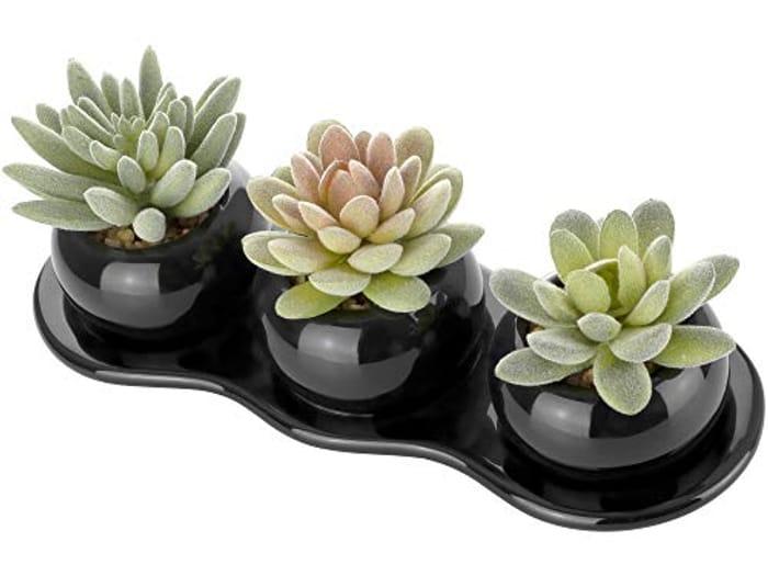 Artificial Succulent Plants - Set of 3