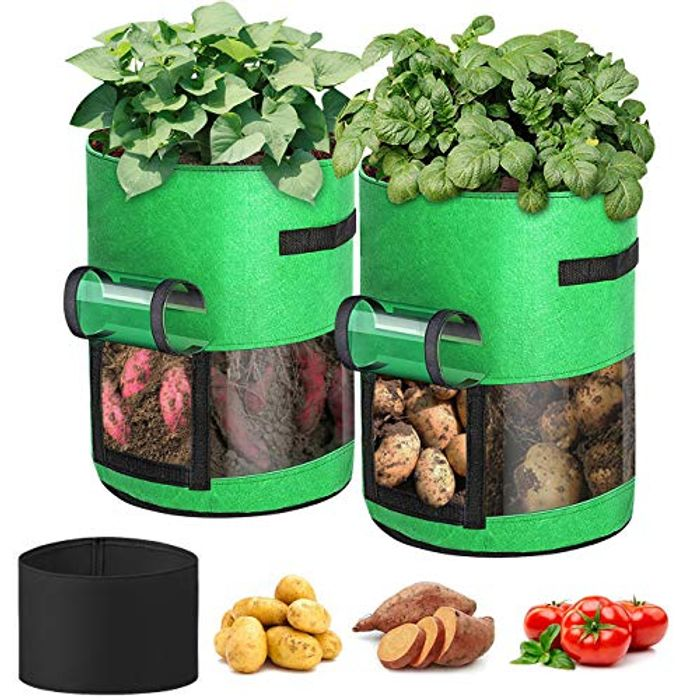 2 Pack 10 Gallon Plant Grow Bags with 360 Visualisation & Handles