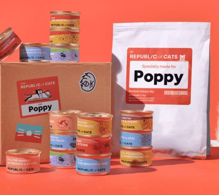 Massive Cat Food Box - Only £2.50!