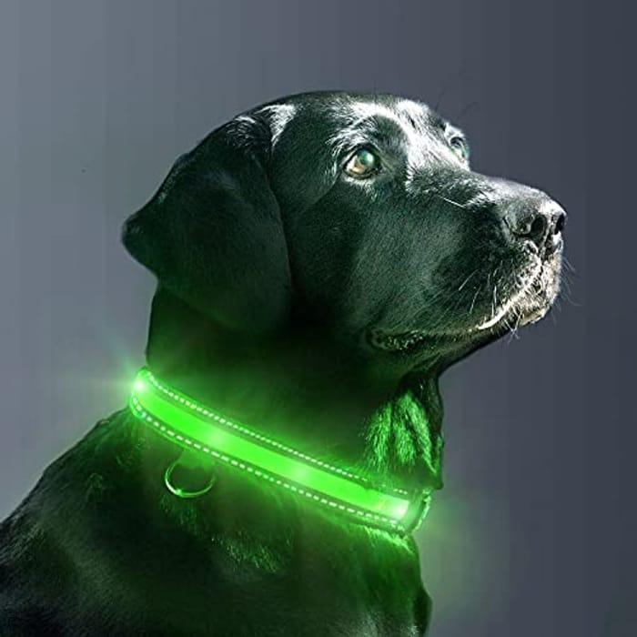 DEAL STACK - EVERSUNN LED USB Glowing Light up Dog Collars + 5% Coupon