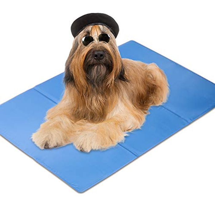 Large Self Cooling Gel Mat for Dogs