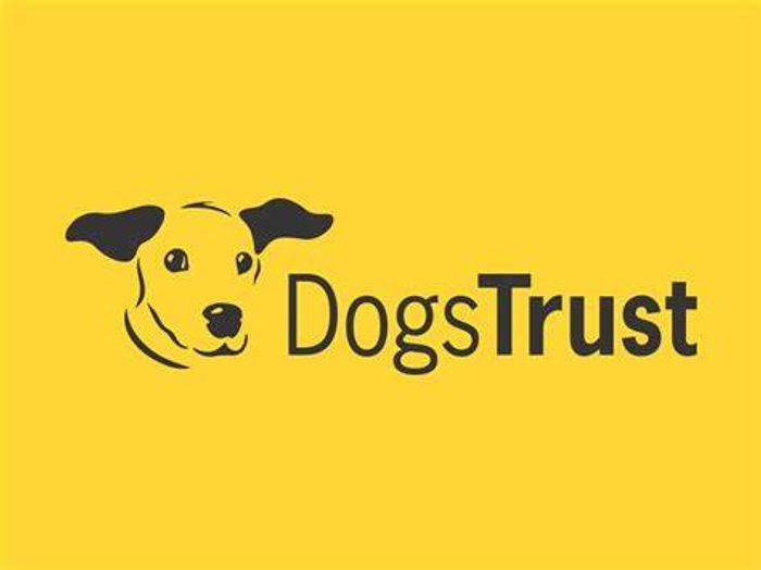 Canine Care Card from Dog's Trust