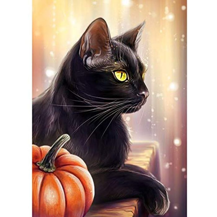 5D DIY Diamond Painting Kit - Black Cat and Pumpkin