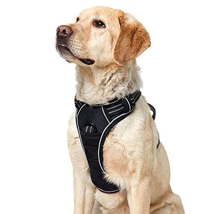 Half Price! Lesure No Pull Dog Harness for Only £7.49