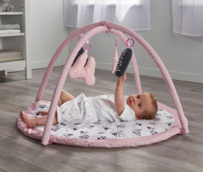 Minnie Mouse Play Gym