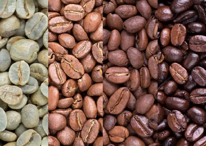 Free Coffee Sampler Bags + 15% Voucher To Recover P&P Charges