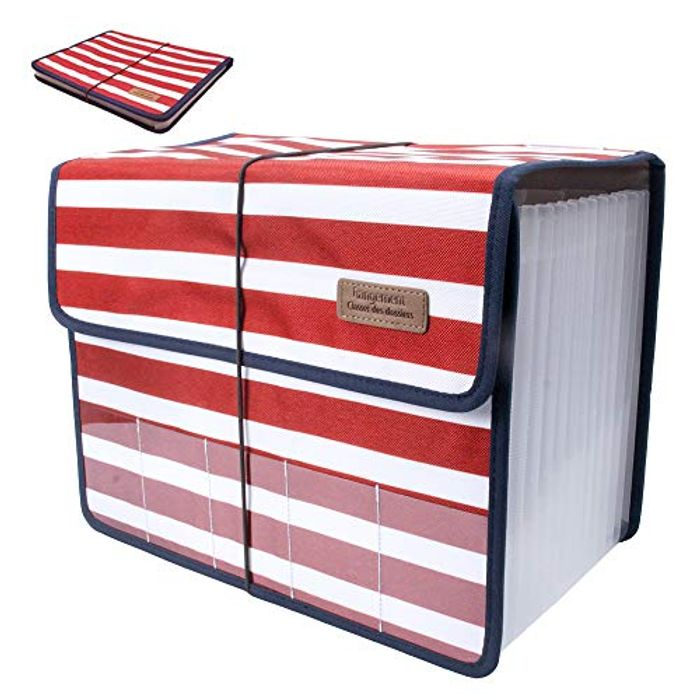 A4 Size Portable Expandable Accordion with 13 Pockets