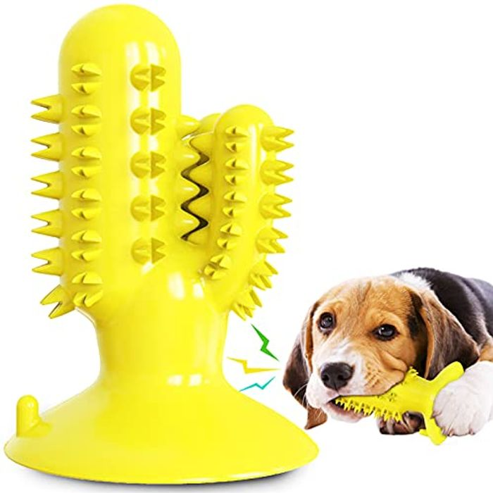 Dog Chew Tooth Cleaning Toy
