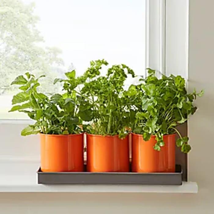 Summer Sale up to 50% off Garden Equipment at Dunelm