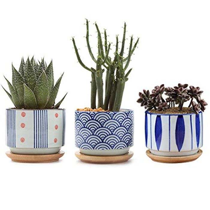 Prime Deal! T4U 7CM Ceramic Succulent Pot with Bamboo Tray Pack of 3