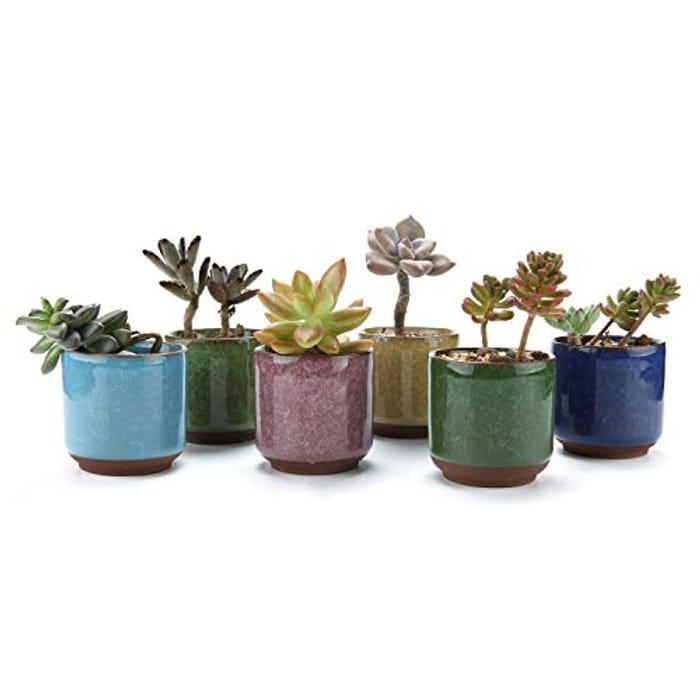 T4U 6.5CM Ceramic Ice Crack Zisha Raised Succulent Plant Pot with £10 off Coupon