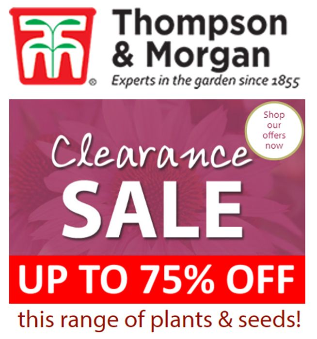 Thompson & Morgan CLEARANCE SALE - up to 75% OFF