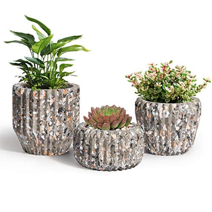 T4U Set of 3 8CM Cement Succulent Pots