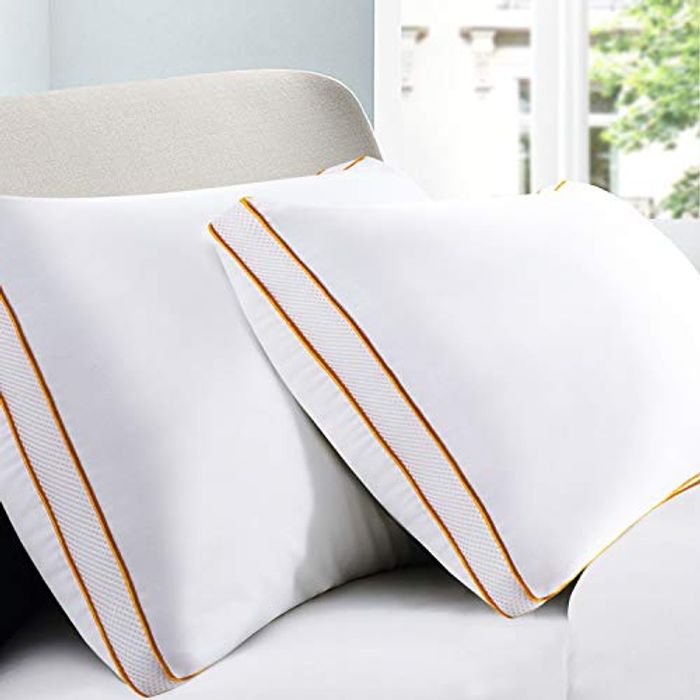 2 Pack down Alternative Bed Pillow with Plush Fiber