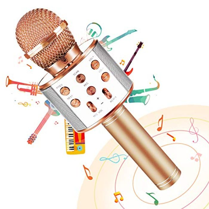 Bluetooth Microphone for Birthday Gifts - Only £6.74!